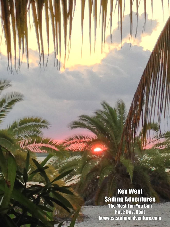 sugarloaf_sunset_cichad_palm